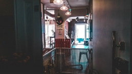 cafe-a-chats-chiens-seoul-hongdae