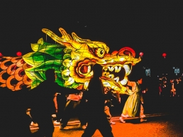 Lotus Lantern Festival dragon