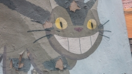 Samcheong-dong peinture d'un chat