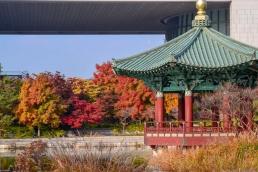 Quelque chos de Corée du Sud éditions Nanika