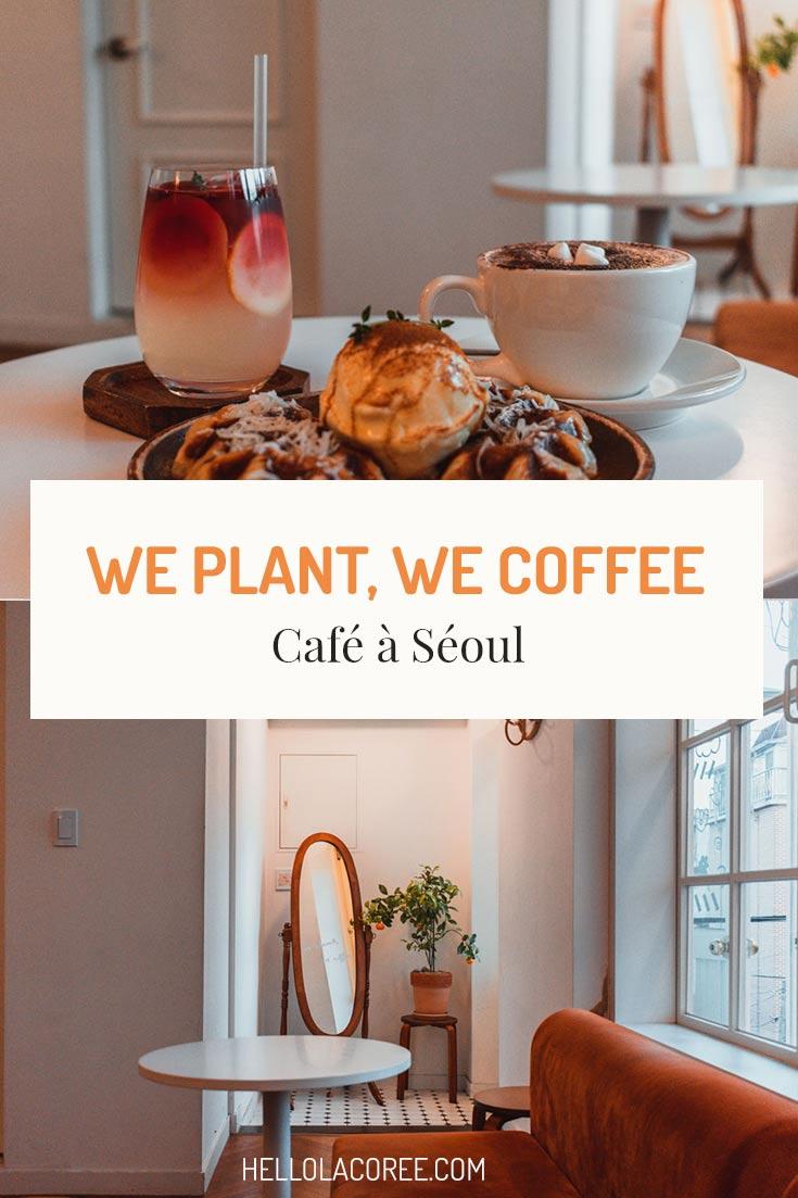 We Plant, We Coffee à Séoul