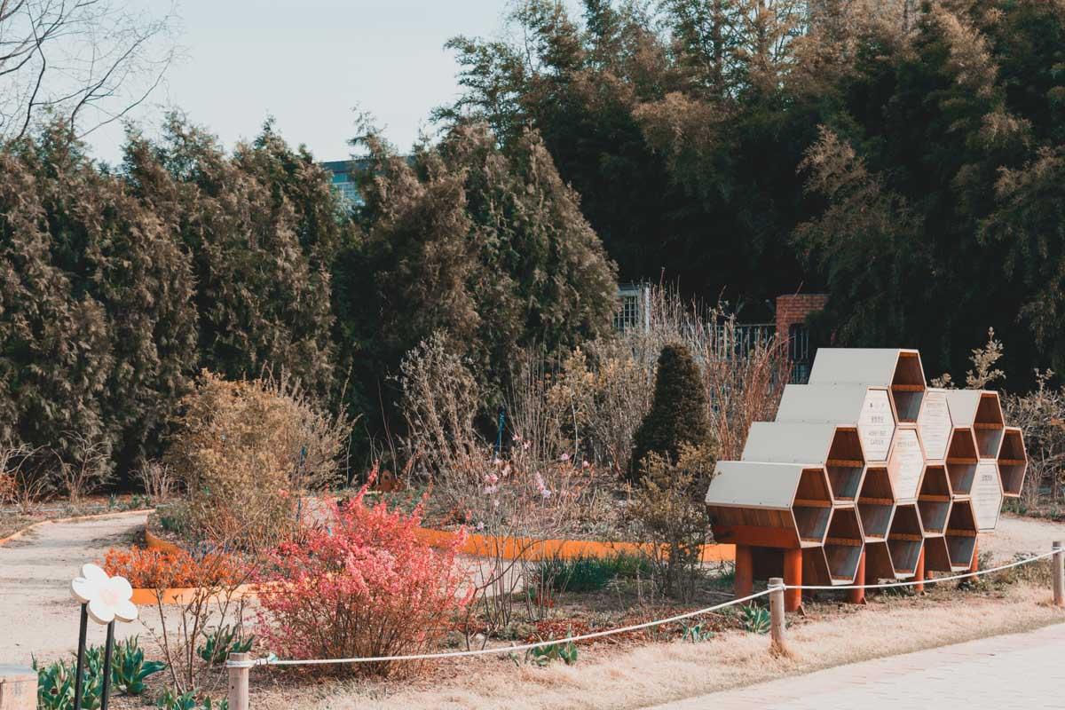 Seoul Forest jardin des abeilles