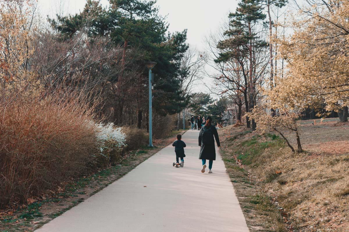 Forêt de Séoul