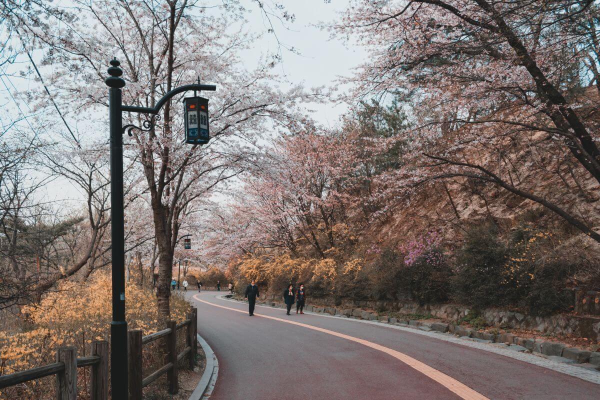Parc Namsan