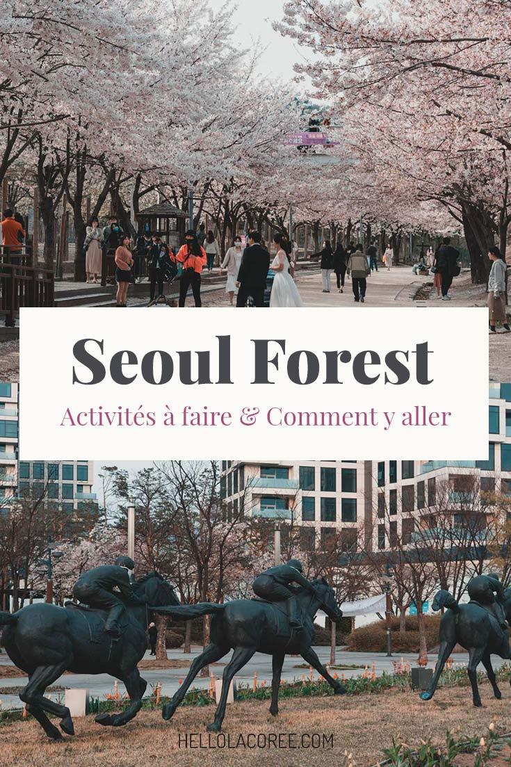 Coree du Sud Seoul Forest