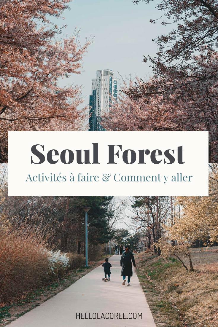 Corée du Sud Seoul Forest