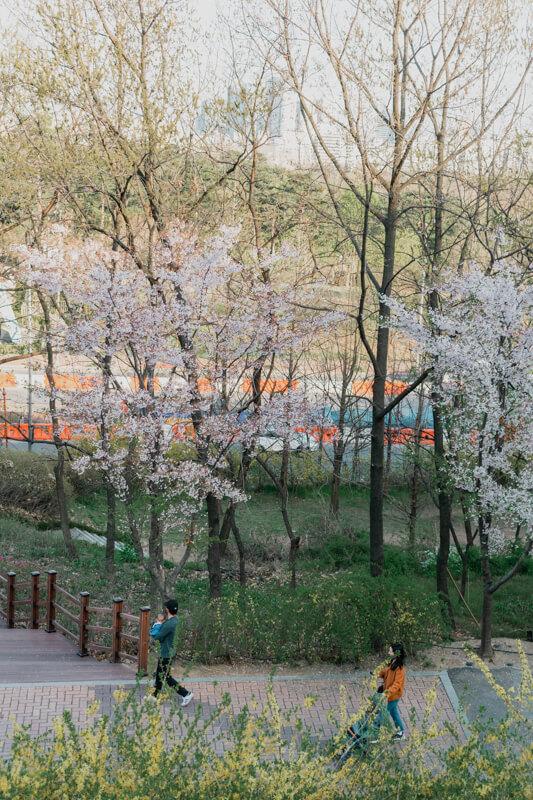 Haneul Park printemps