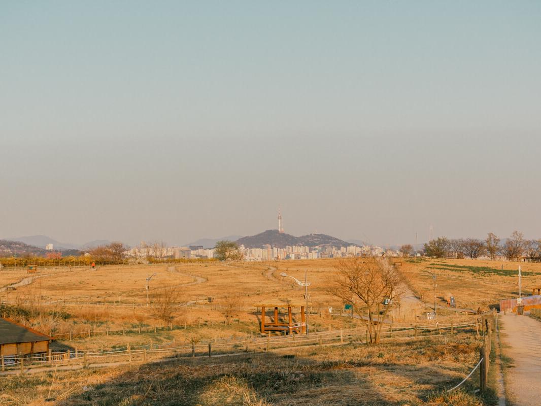 Haneul Park